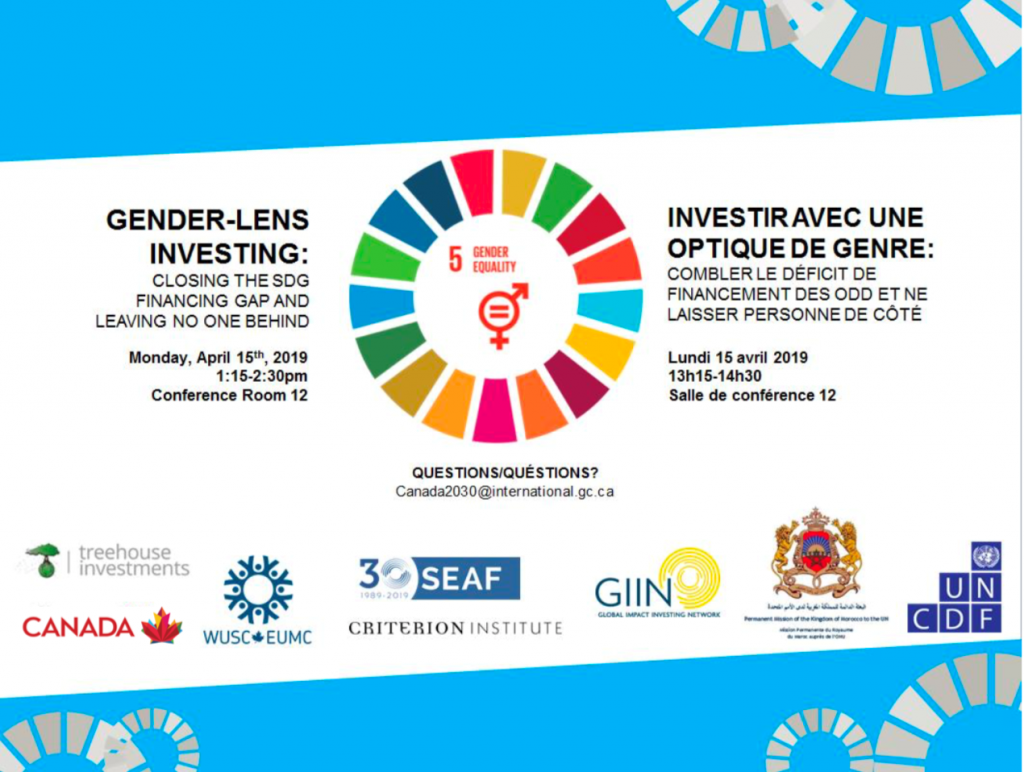 Five Takeaways from the UN ECOSOC Gender Lens Panel - SEAF